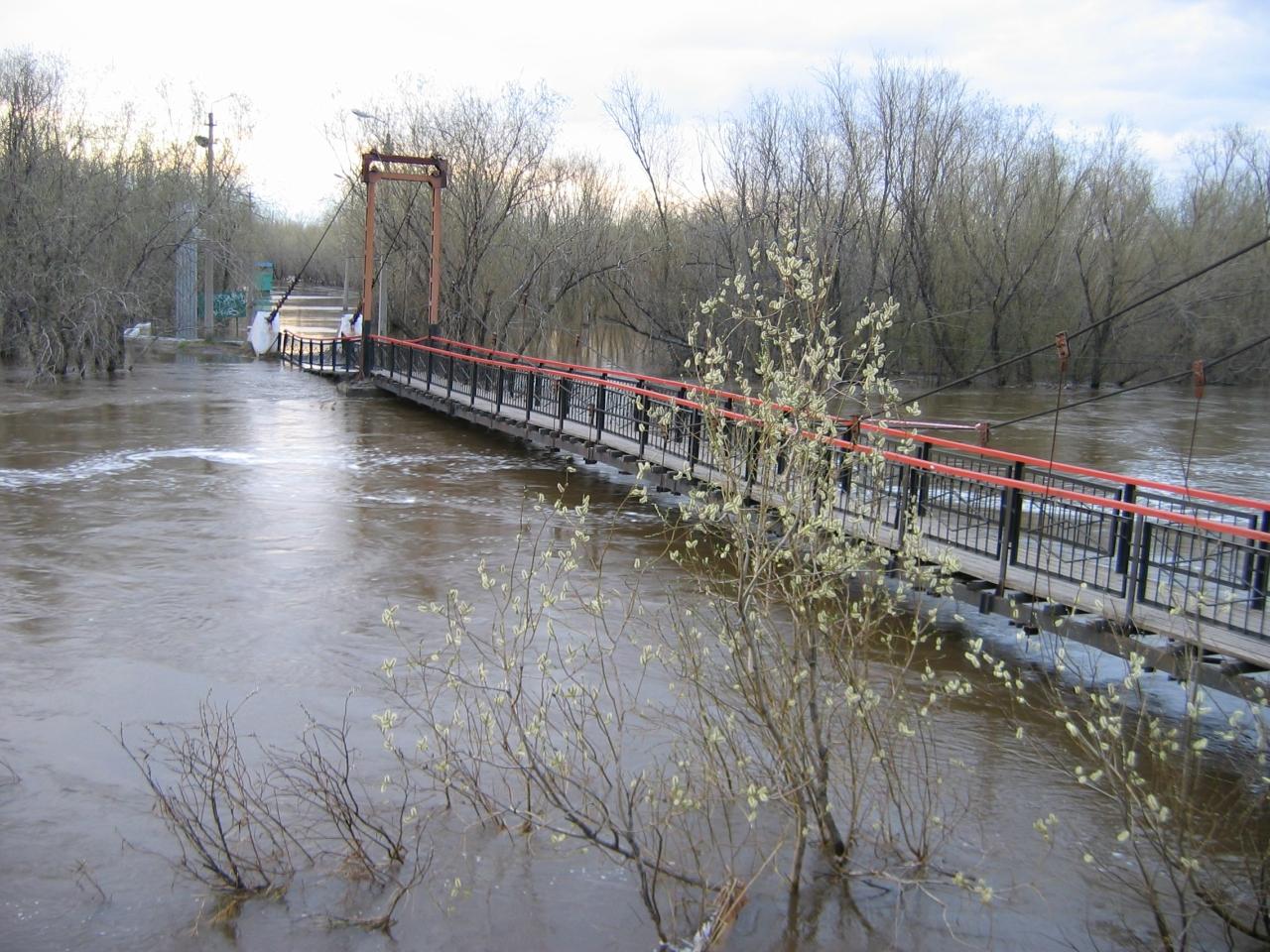 Подвисной мост в половодье